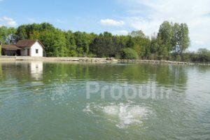 Aération des pièces d'eau, aération lac